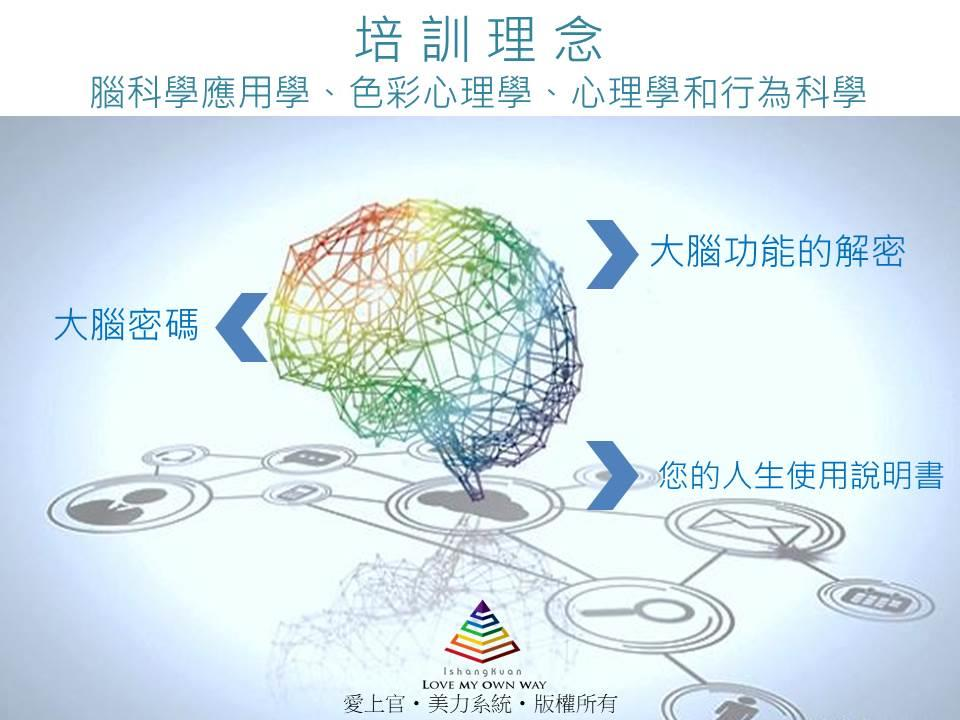 美力 色彩全腦智能系統